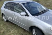 Toyota Allex  2001 Хетчбэк Новокорсунская