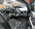 Toyota Prius 2009 Хетчбэк Белореченск